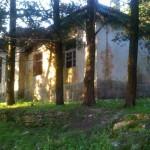 Shkolla e Katerkolles, Skola u Vladimiru
