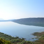 Sasko jezero - Liqeni i Shasit