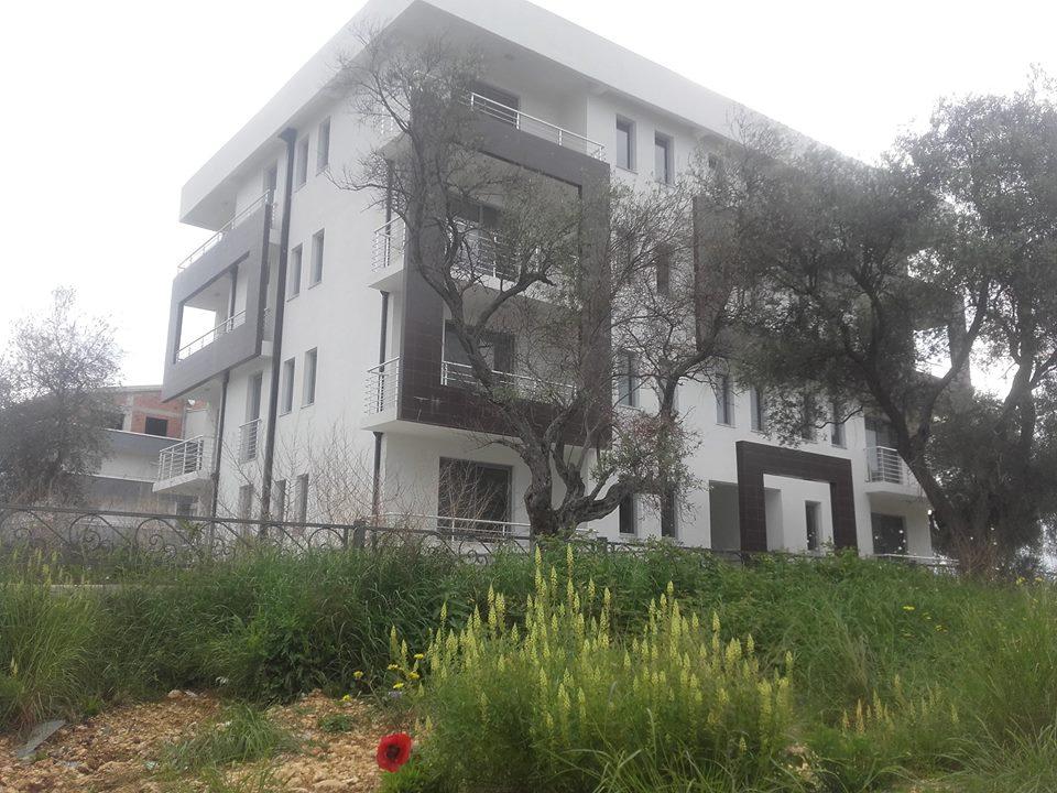 Ndertesa Pinjesh, Zgrada Pinjes