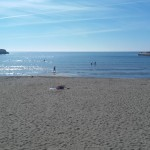 Plazhi i vogel