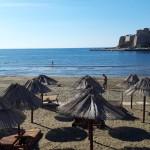 Plazha e Vogel